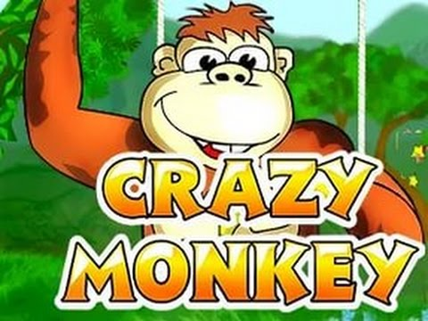 Обзор игрового автомата «Crazy Monkey»